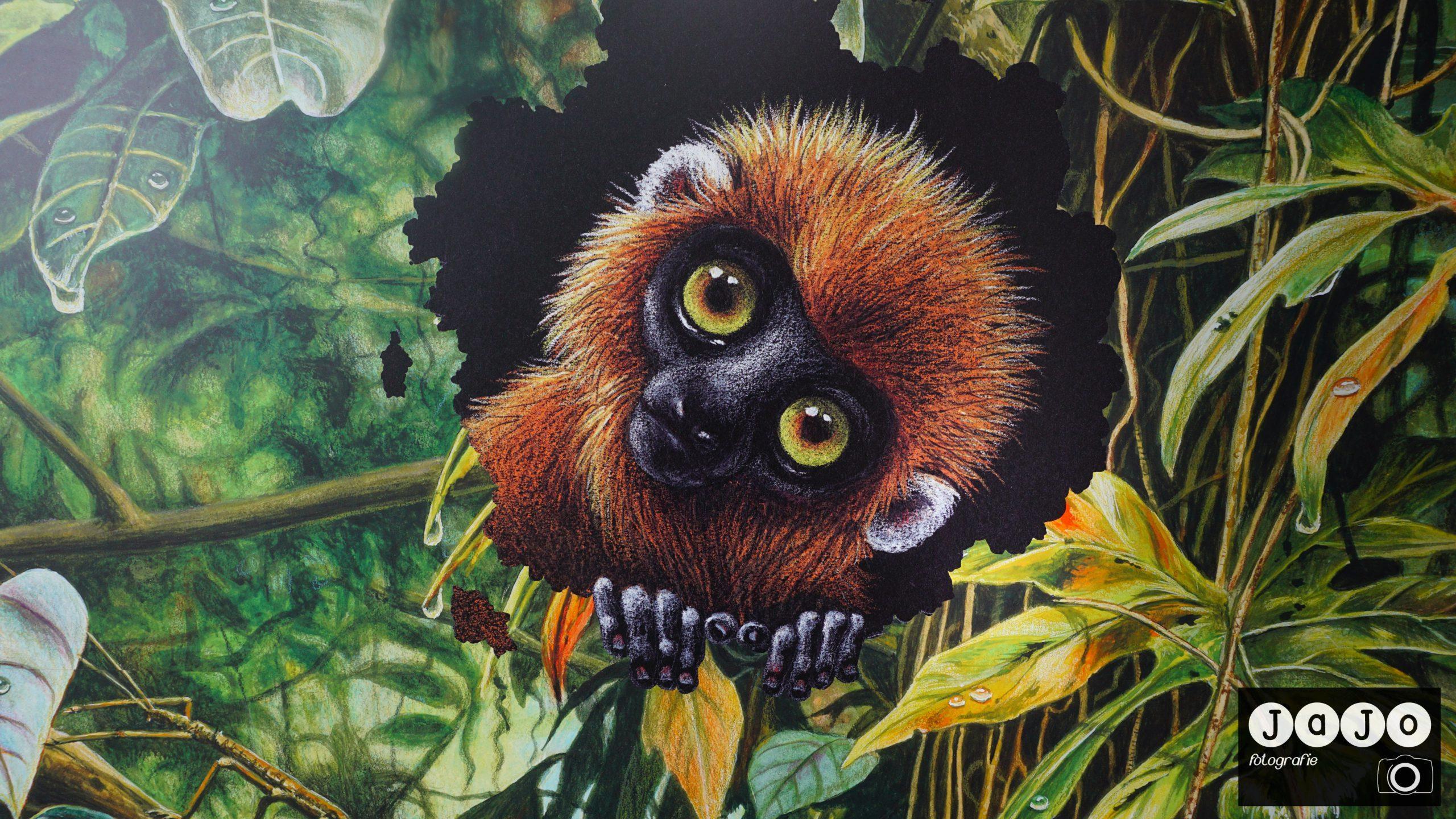 Natura Docet Wonderyck – Denekamp