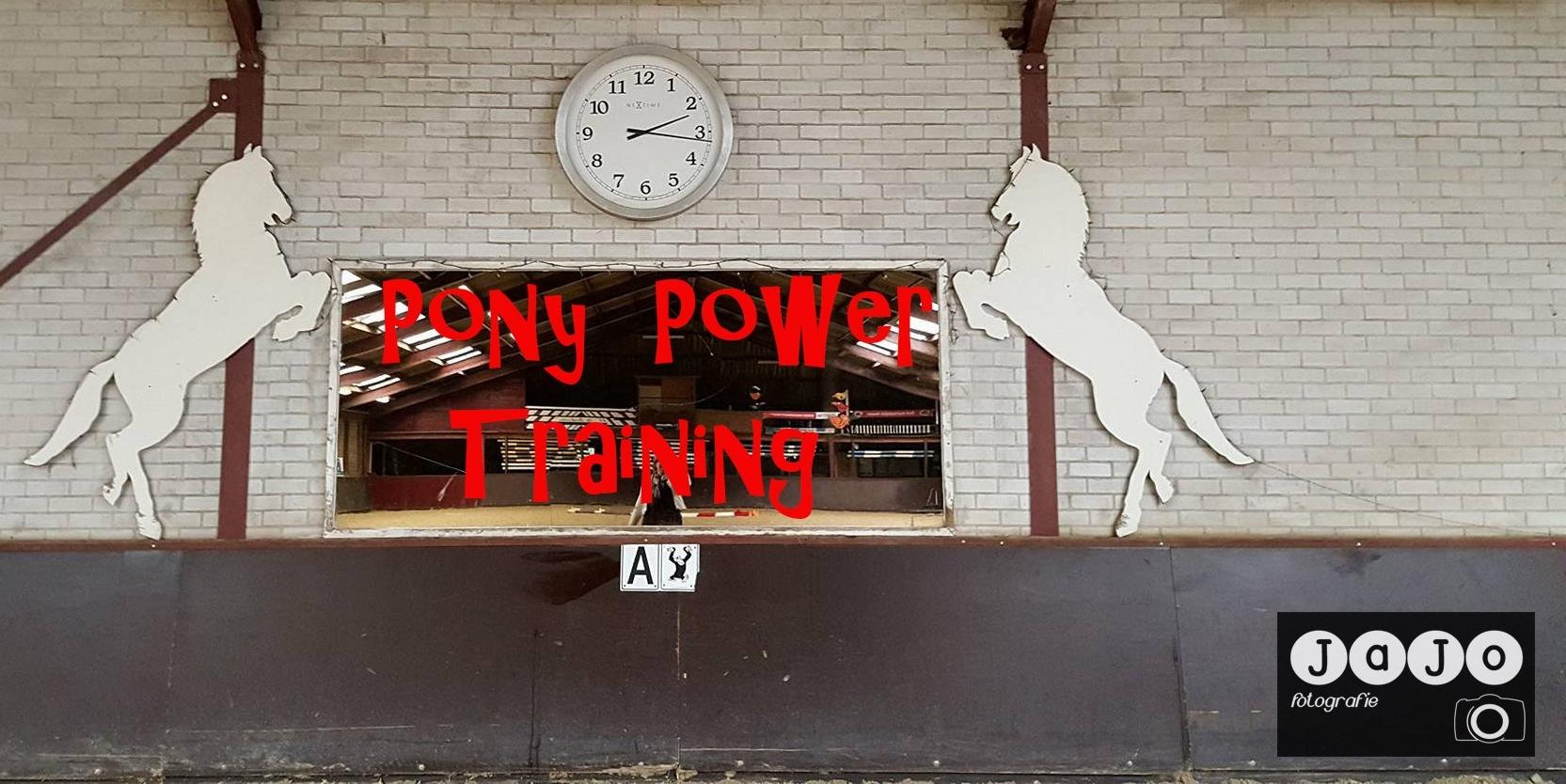 Pony Power – Annen