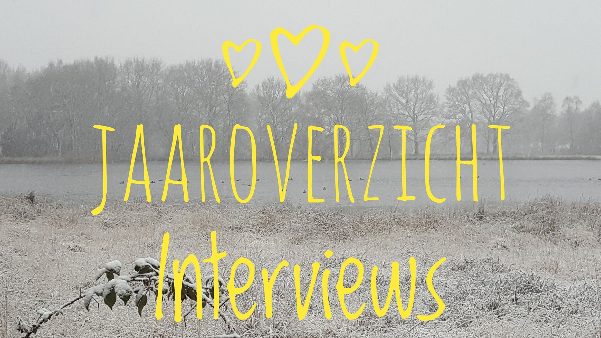 Jaaroverzicht Interviews