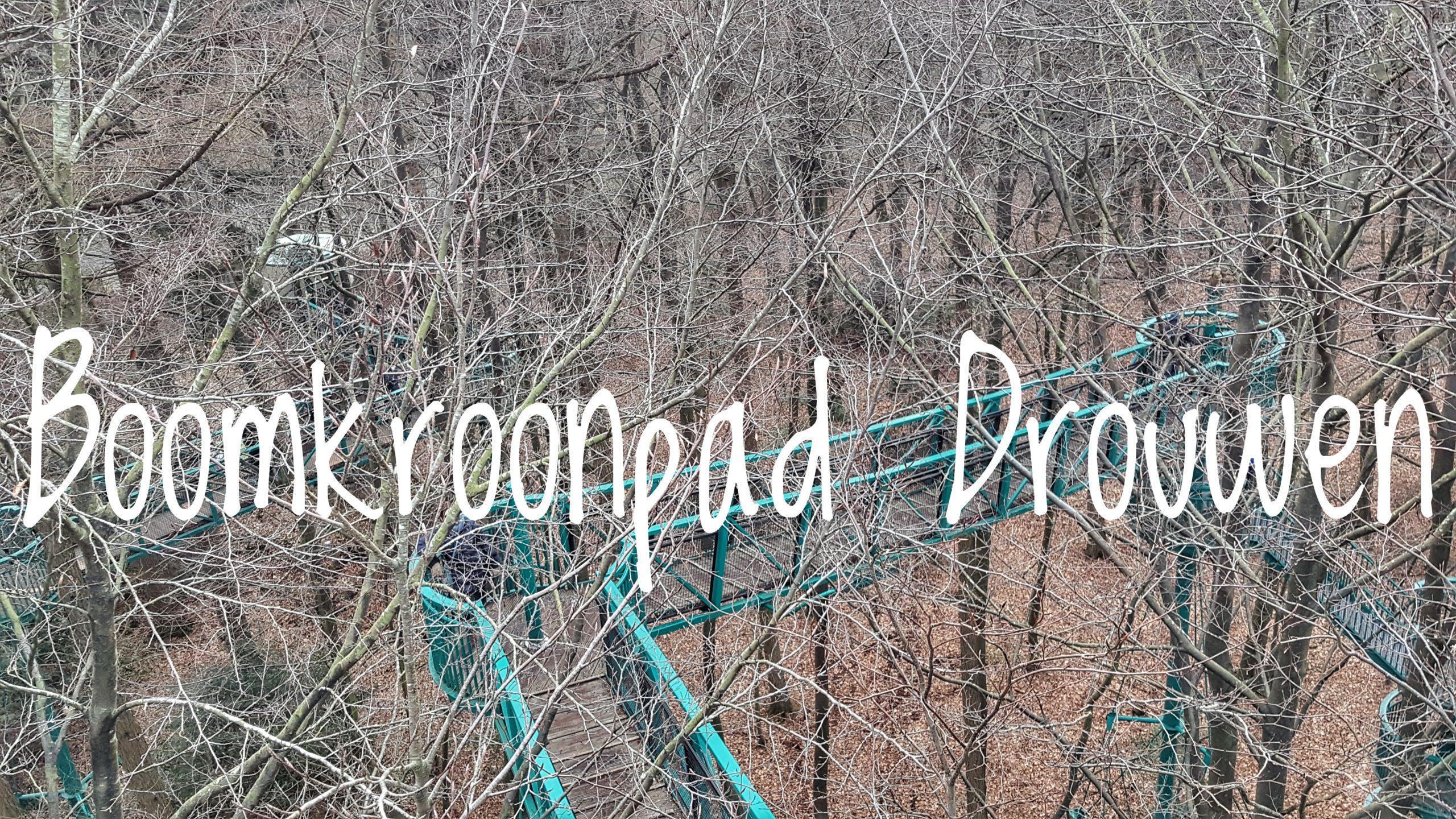 Boomkroonpad – Drouwen