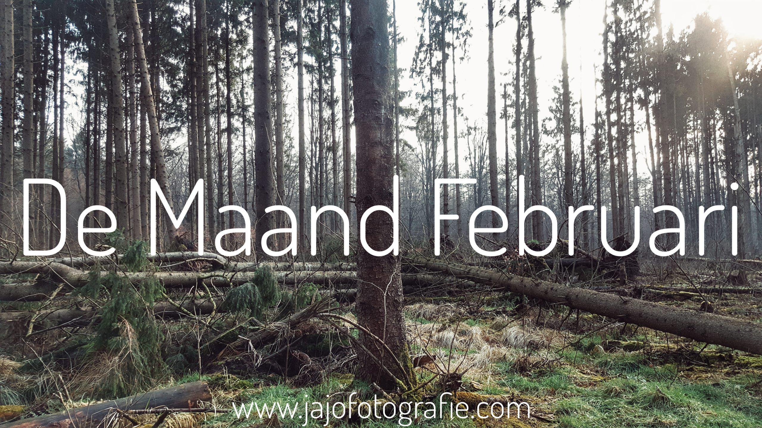 De Maand Februari