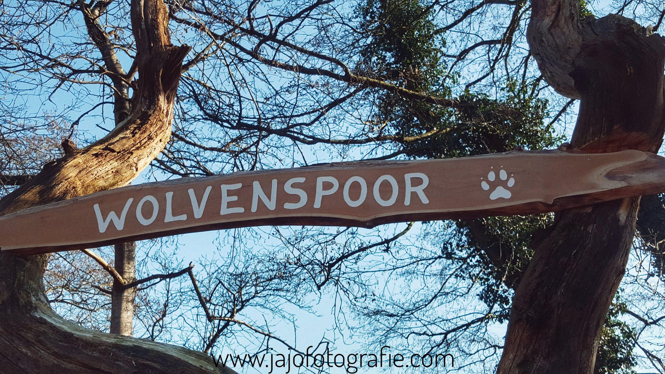 Het wolvenspoor – Schoonloo