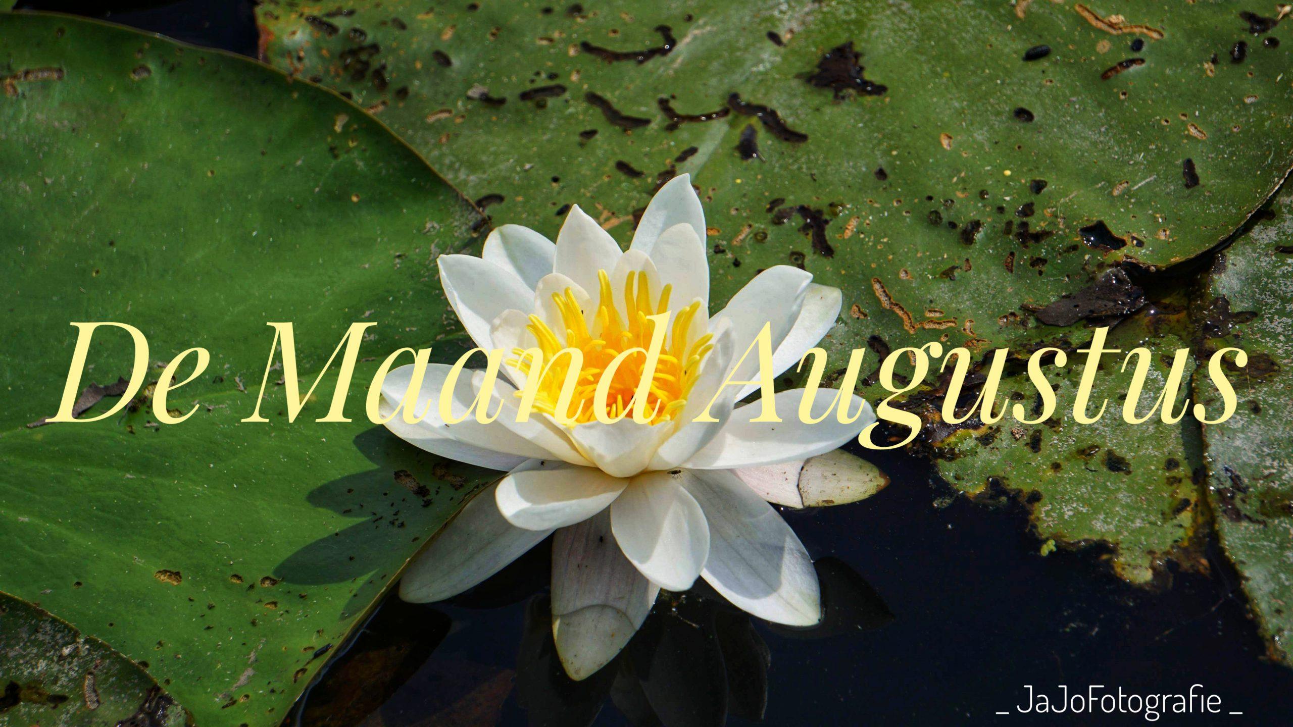 De maand Augustus
