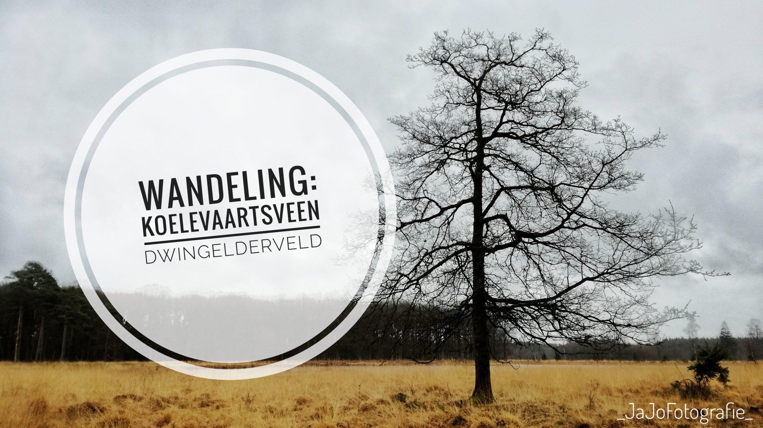 Wandeling: Koelevaartsveen