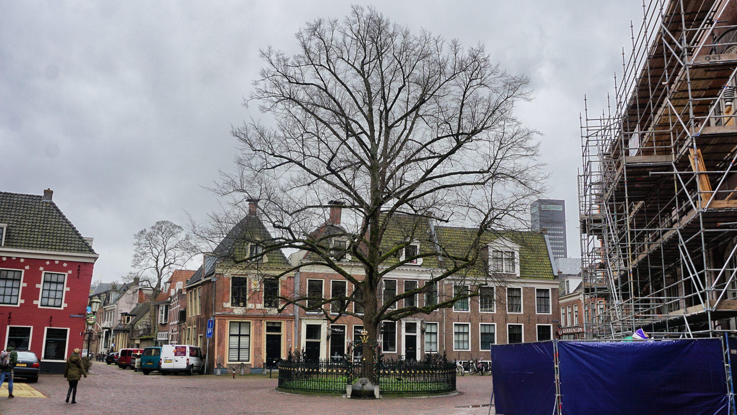 Hofplein, Leeuwarden, Nassauroute, Oranje, Nassau