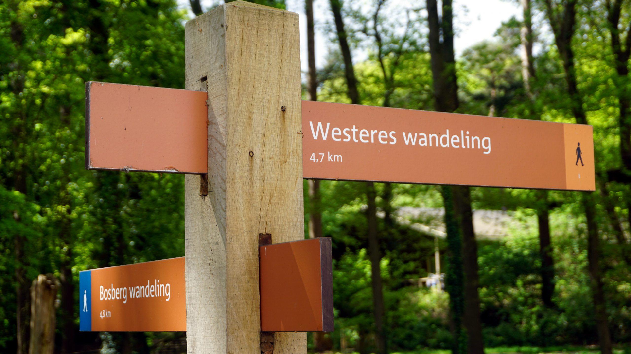 WesterEs Wandeling – Appelscha