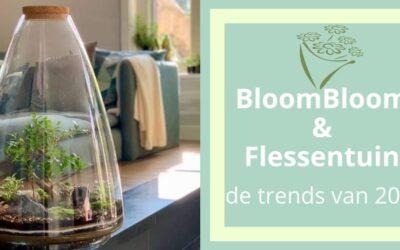 Droogbloemen & Flessentuin heb jij ze al in huis?