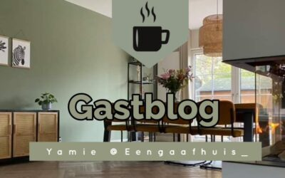Gastblog: Het huis verbouwen – Yamie Sparidaans