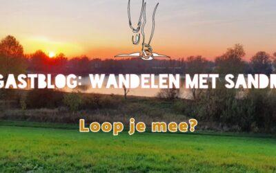 Gastblog – de natuur in met: Sandra van Boggelen