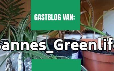 Gastblog Sanne's plantenbieb in Veendam