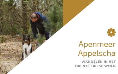 Apemeer – Oude Willem / Appelscha