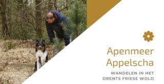 Apemeer Applscha, 4km wandelen in het Drents Friese wold
